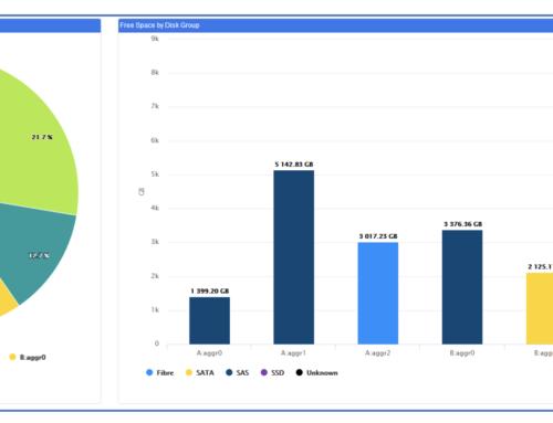 Optimizing NetApp Storage with VSI